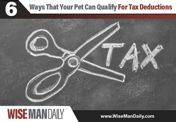 6 Ways That Your Pet Can Qualify For Tax Deductions